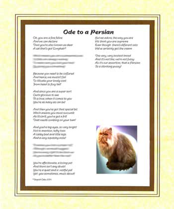Ode to a Persian Cat